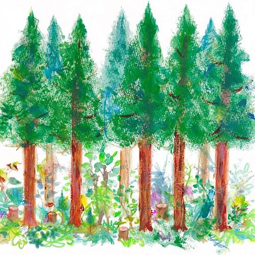 森の仲間ポータル