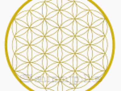12月28日「神聖幾何学~フラワー・オブ・ライフの叡智WS」開催