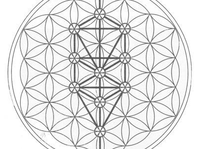 12月7日『神聖幾何学~フラワーオブライフに込められた叡智』セミナー開催